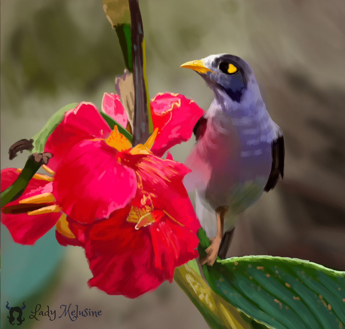 Digital Painting Oiseau tropical 01 Lady Melusine