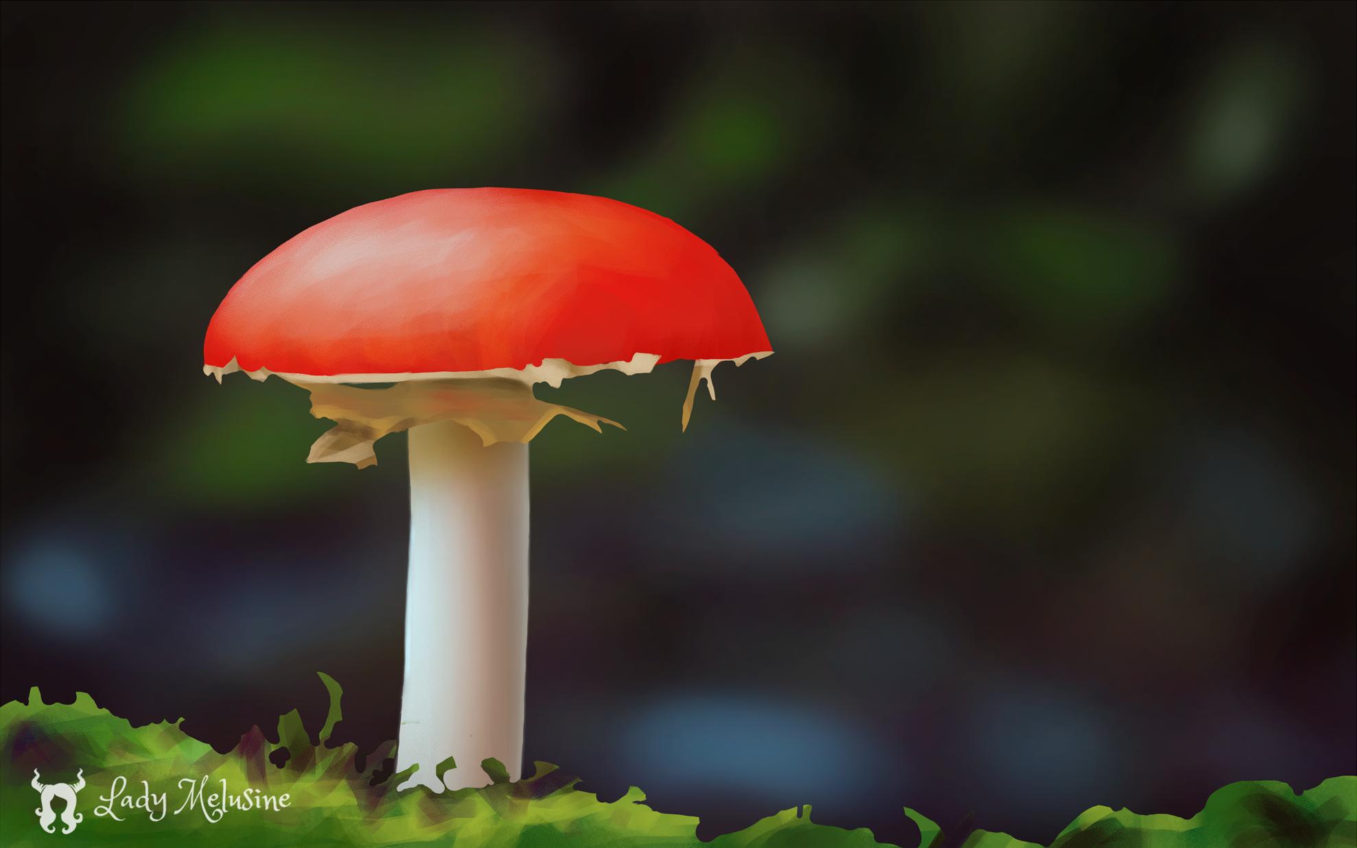 Mushroom Lady Melusine Step 02